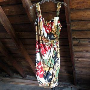 Caché Dress / Size 8